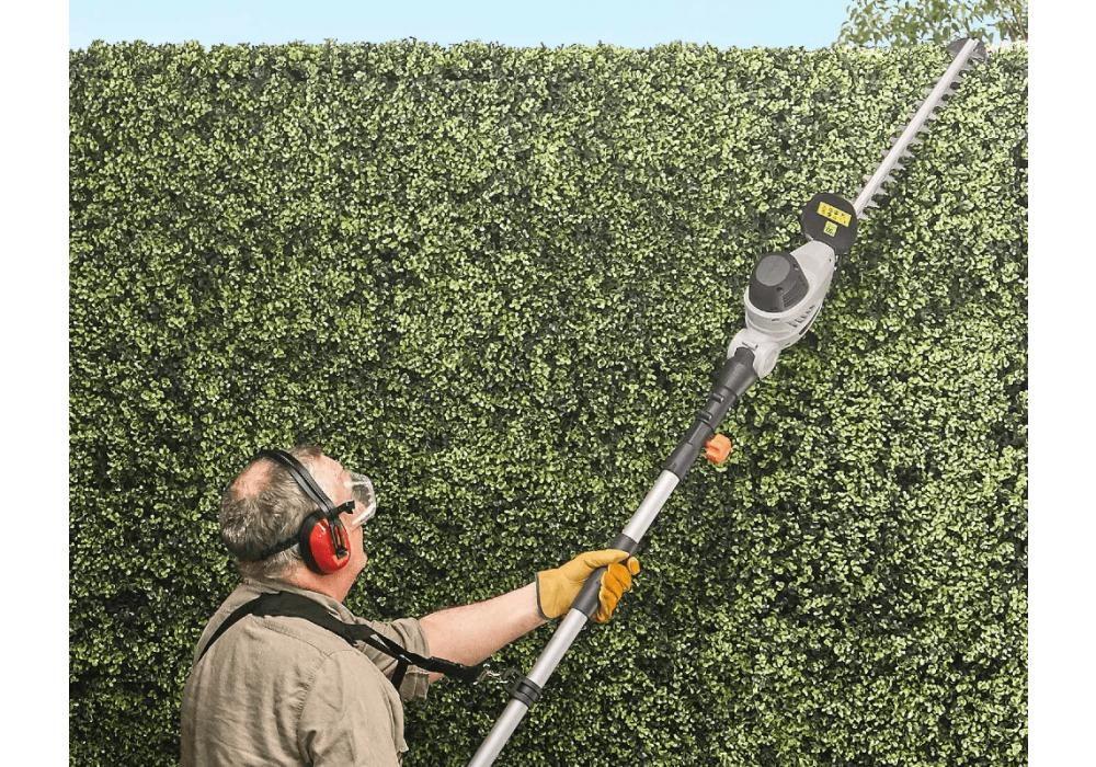 11 Steps To Winterproof Your Garden