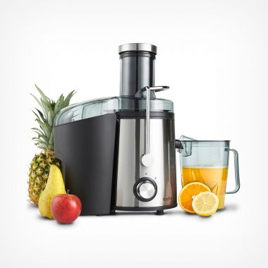 800W Stainless Steel Juicer