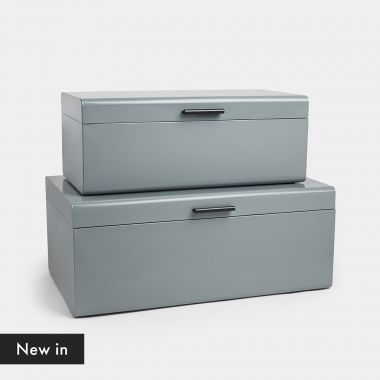 Set of 2 Grey Trunks