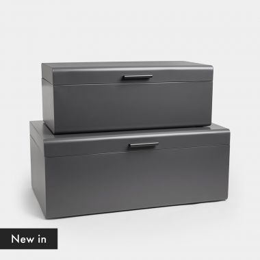 Set of 2 Charcoal Trunks