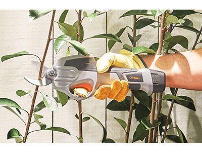 Upgrade your gardening